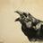 Crowborn's avatar