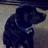Jayuse83's avatar