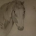 Life for Horses's avatar