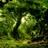 Fangorn54's avatar