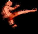 Jumping Switch Kick