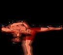 Power Spinning Side Kick Body