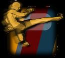 Demetrious Johnson (Champion2)