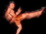 Teap Kick Body