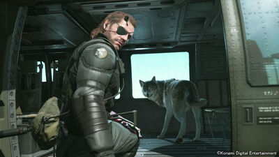 Top 10 Best Video Game Dogs of All Time