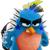 Bluejay5678