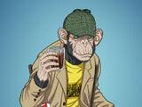 Bobo T. Chimpanzee