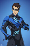 Nightwing Variant 4