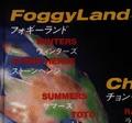 Foggyland M2manual.png