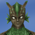 Face-Old Female-Sylvan