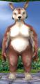 Rotund female bounder