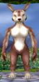 Normal female bounder