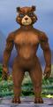 Body-Athletic Female-Ursine