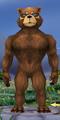 Body-Athletic Male-Ursine