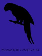 Conservativeflag