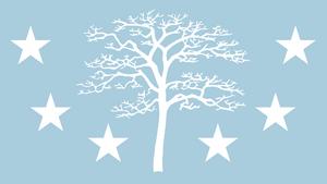 Flag-1560393395