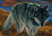 Wolf Plains Passage