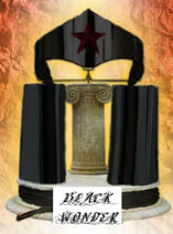 Blackwonderarmor