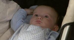 Freddie Mitchell 2