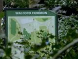 Walford Common