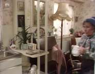 Ethel's Sheltered Housing view from kitchen (12 January 1988)