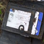 Lucy Beale Driving Licence (2014)