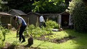 Allotments 2014-1