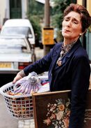 Dot Cotton Promo