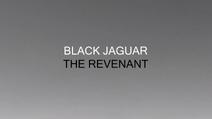 BlackJaguar