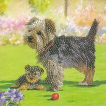 Yorkie Terrier Dogs -Crystal Art Card Kit 18cm