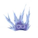 Cryowhite