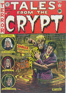 Tales from the Crypt Vol 1 24