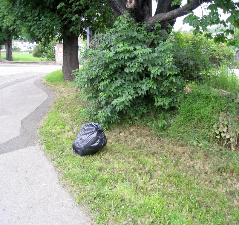 2009-06-27 Green Lane(004)