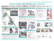 Woolley-wood