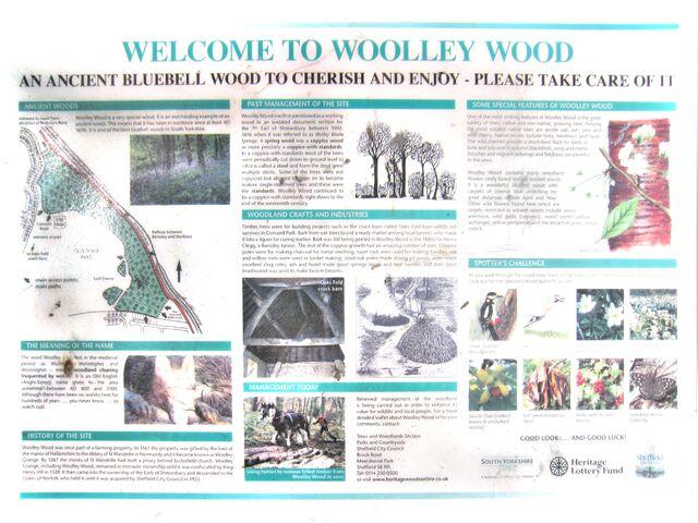 File:Woolley-wood.jpg