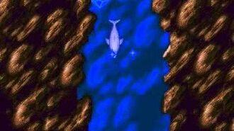 Ecco the Dolphin (Genesis) - Full Playthrough