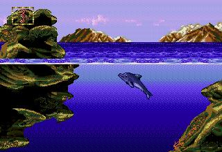 Seahorse reef screen