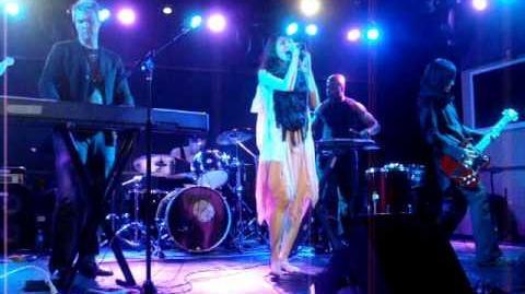 Echostream @ Knitting Factory 04-13-10 (Part 3)