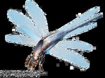 DragonflyMorph WillNichols