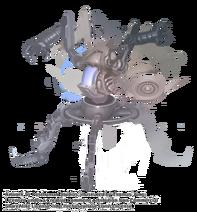 CetusMorph ThomasJung