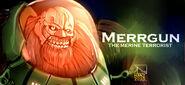 Merrgun cover