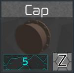 CapIcon