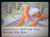 Genetically Modified Crop Monster Big Soya