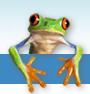 Frogk