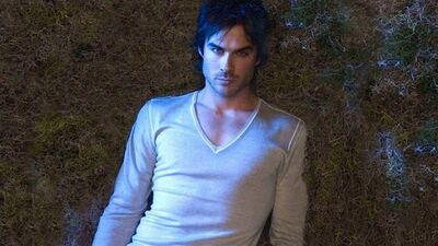 Everything We Know About Ian Somerhalder's New Vampire Show