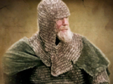 Rohirrim of the Eastfold