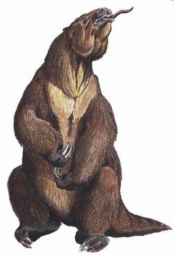 Megatherium Americanum2