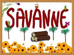 SavanneFlag