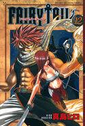 Fairy Tail Portada 12