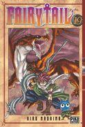 Fairy Tail Portada 19